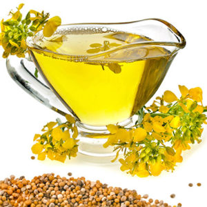 Canola Oil and Seeds